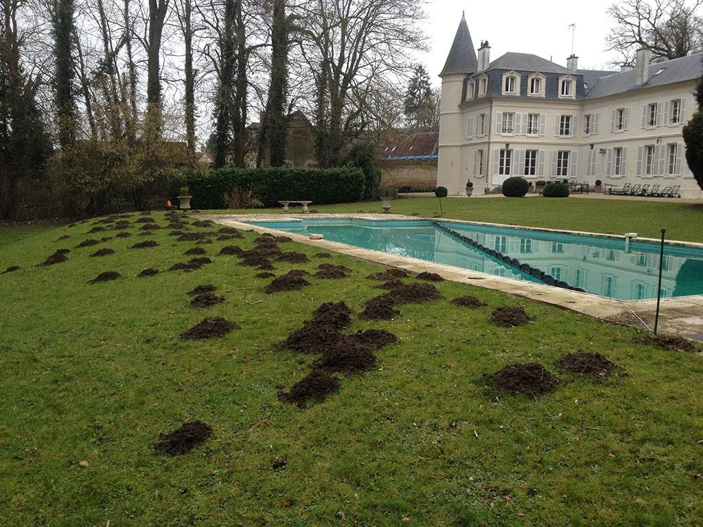 Info taupier pourquoi la taupe est nuisible pour votre jardin et comment se ne plus avoir de taupe - Comment se debarasser des taupes ...